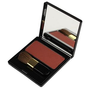 Brown Bizarre Compact Blush